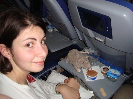 Mau et le rat dans l'avion